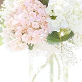 Tarro de cristal  y hortensias naturales. Credits: glass jar photography