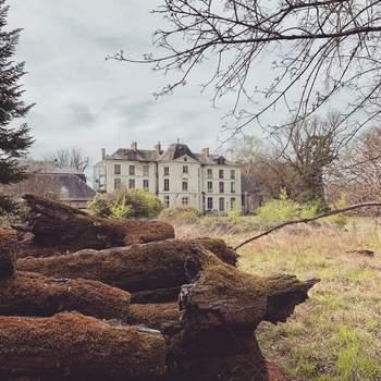 Photo : Château de Freschines - Ce château du Loir-et-Cher est d'une élégance classique, entouré de 26 hectares d'arbres séculaires.