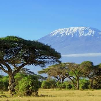 KENIA. Foto: Shutterstock