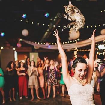 Фото: bridesthrowingcats.com - Two Pair Photography
