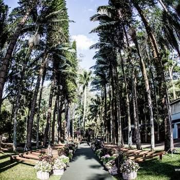 Local: Fazenda Vila Rica - Foto: Ricardo Cintra