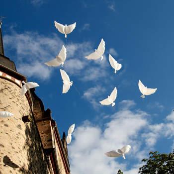 """Romantik pur auf Schloss Romrod  <a href=""""http://www.schloss-romrod.com"""">Schloss Romrod</a>"""