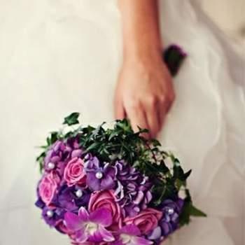 Ravissant camaïeu de couleurs. Source : attitude fotografia