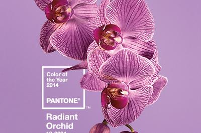 Orquídea Radiante: El color del año para bodas 2014 según Pantone