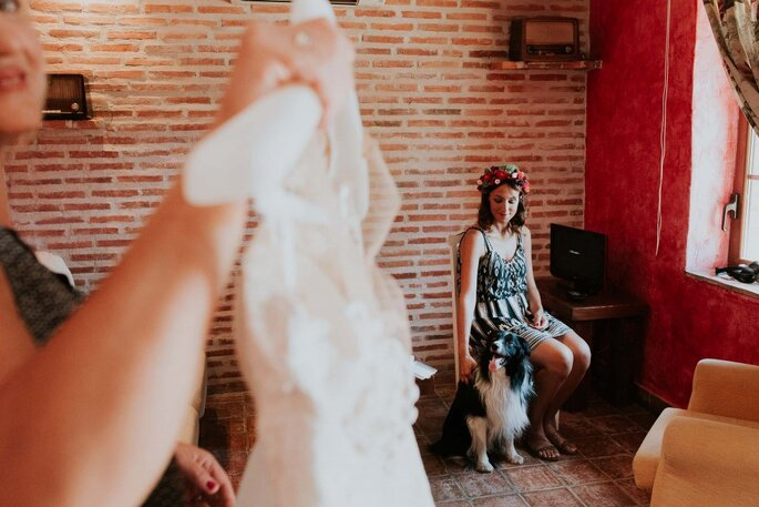 Foto: Álvaro Sancha Fotógrafos