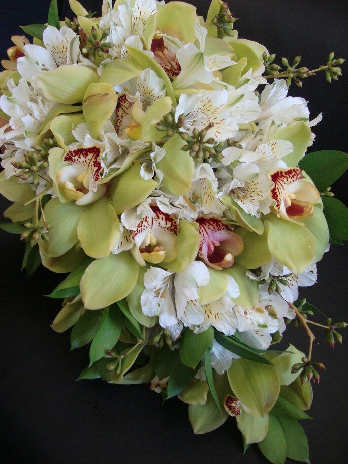 Tutti Flora. Foto: divulgação