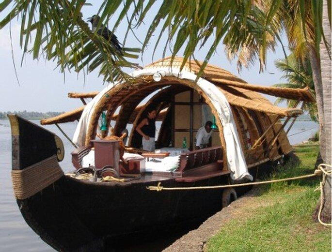 Voyage de noces dans le sud de l'Inde, découvrez le Coconut Lagoon...