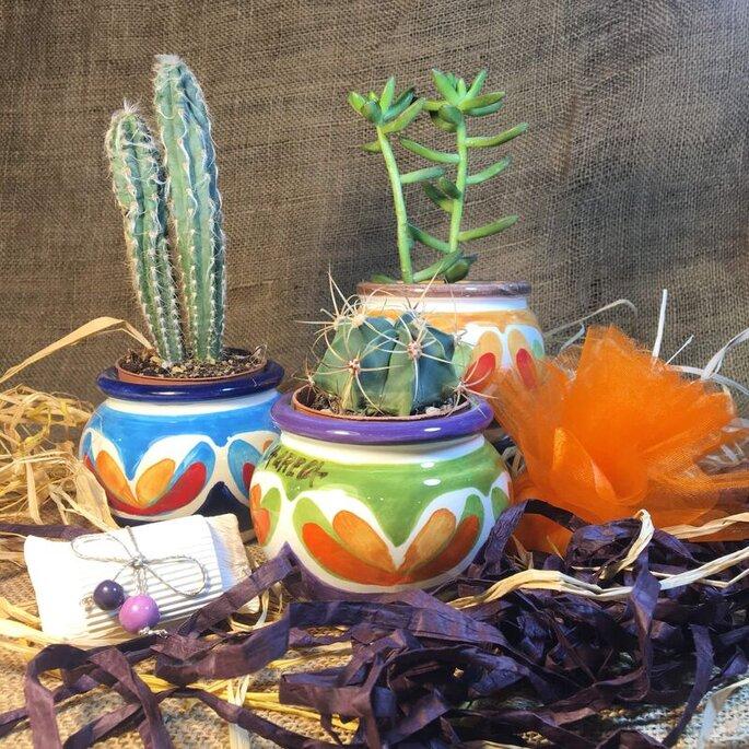 Maninterra Ceramica di Laura La greca - vasetti colorati porta piante