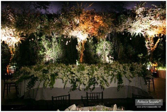 Disfruta de unas fotos perfectas en el Jardín Mayita - Foto Antonio Saucedo