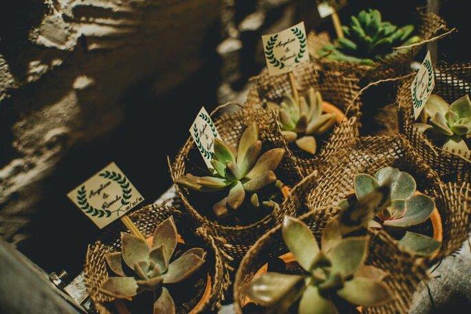 vasinhos de suculentas para Lembrancinha de casamento na Casinha Quintal