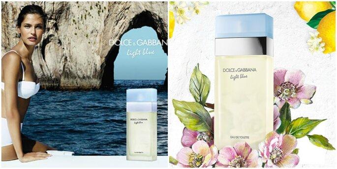 Light Blue - Dolce & Gabbana