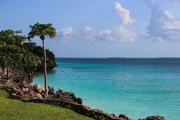 Zanzibar. Créditos: Jasmina Ajkic via Unsplash