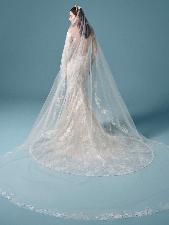 Velo de novia largo de tul con encaje estilo catedral