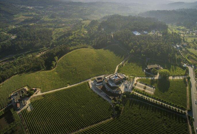Monverde Wine Experience Hotel