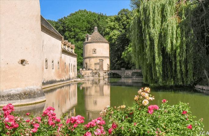 Les douves du château en extérieur, entourées par de la végétation, offrent beaucoup de cachet à la propriété
