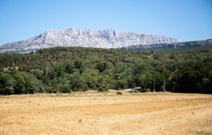 Pré sec avec des arbres au second plan et la montagne en toile de fond sur ciel bleu
