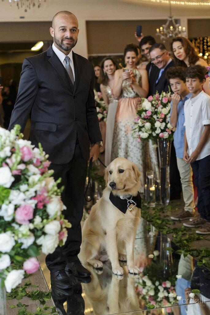 Cães na cerimônia