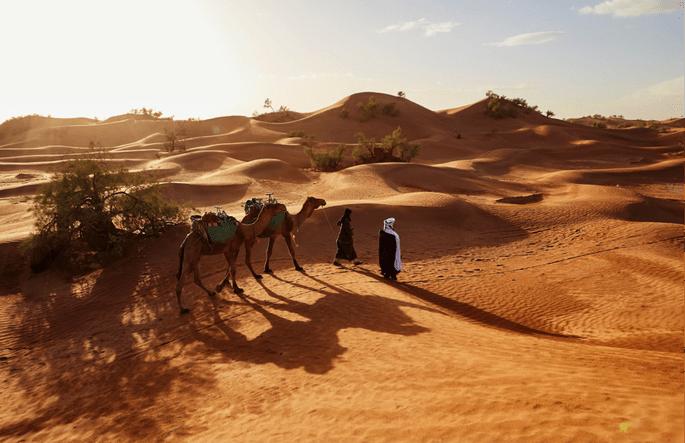 Auf Kamelen in den Sonnenaufgang in der Liwa Wüste