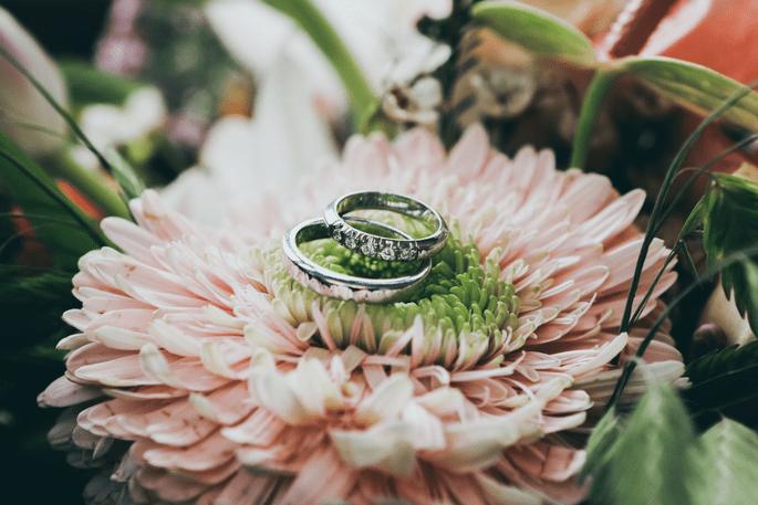 fb9b3c0ccdc4 Cómo elegir las argollas de matrimonio en 5 sencillos pasos