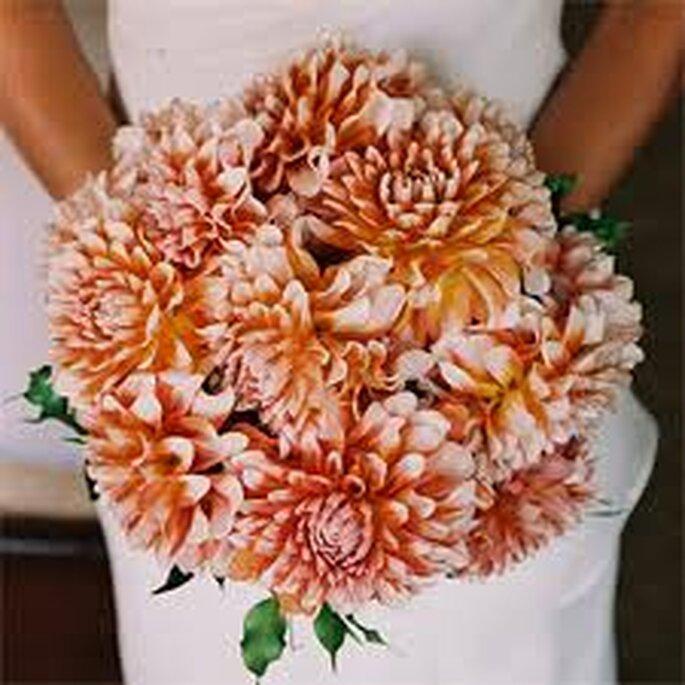 Dalias naranjas y blancas: hermoso contraste con un traje blanco radiante
