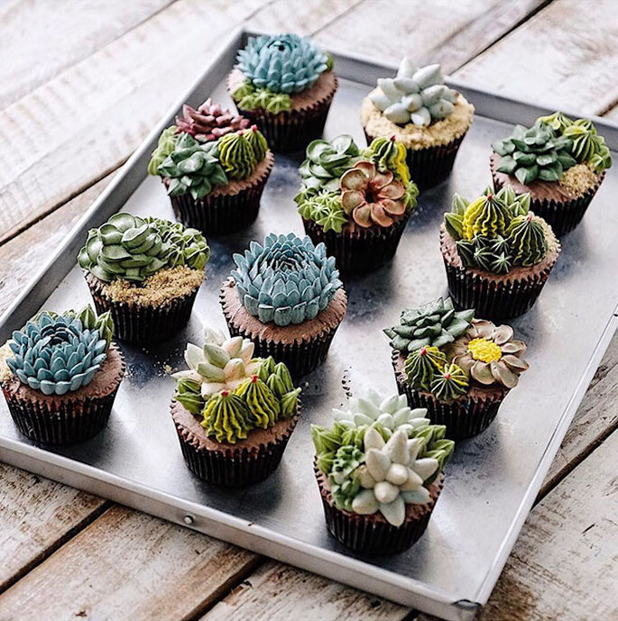 Ivenoven Succulent Cakes
