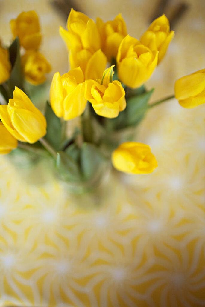 Decoración en amarillo intenso - Julie Harmsen Photography