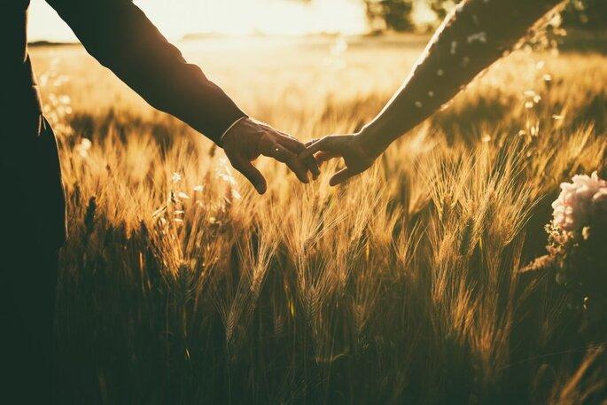 Uomo Leone Matrimonio : Ad ognuna il suo segno ecco a voi la sposa del leone