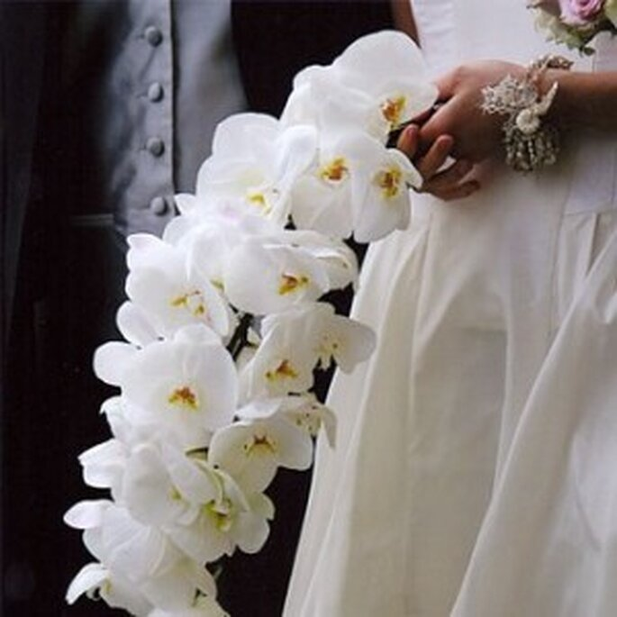 Ramo de novia de orquídeas - www.myweddingflowerideas.co.uk