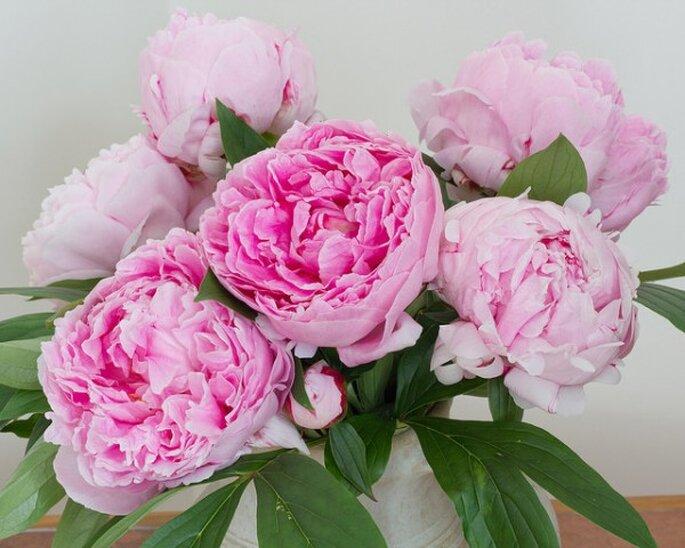 Los mejores acentos de color rosa para decorar tu boda - Foto Ian