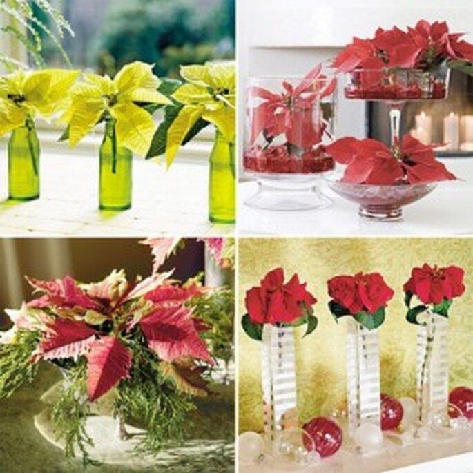 Flores de Pascua para una boda en Navidad - Brendasweddingblog