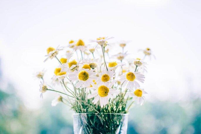 Arreglo de mesa con margaritas y florero de cristal