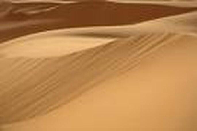 le désert du Sahara