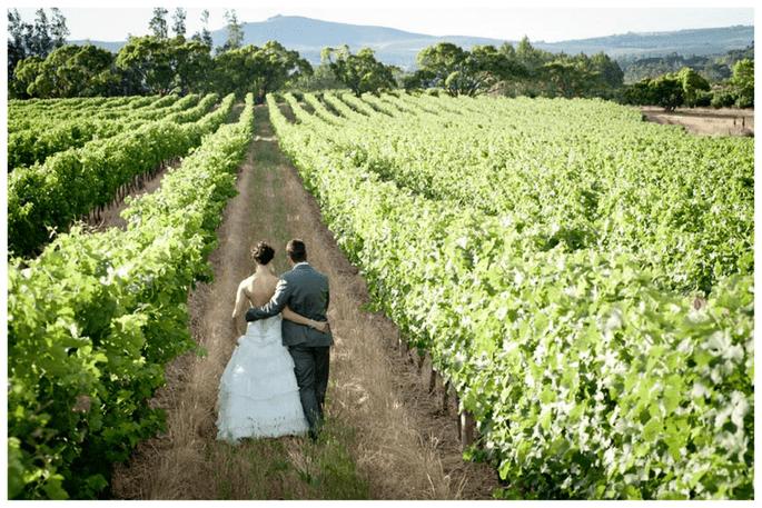 Noivos na vinha