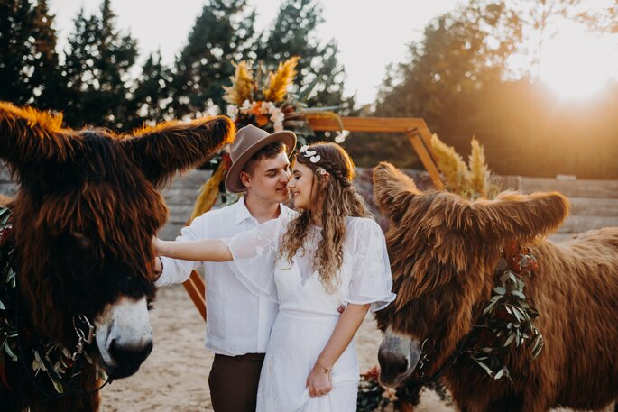 Die Farben des Orients Hochzeitsshooting Brautpaar mit Eseln