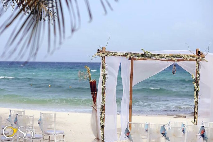 Playa Premium Flowers