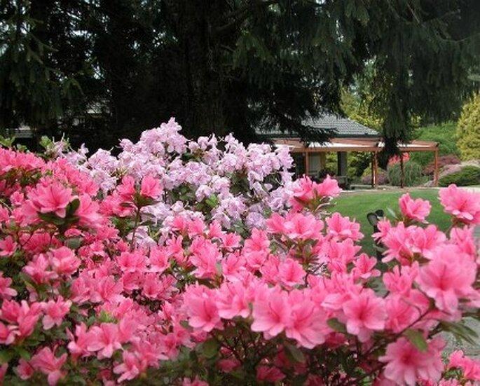 Villa Senni Prezzi Matrimonio