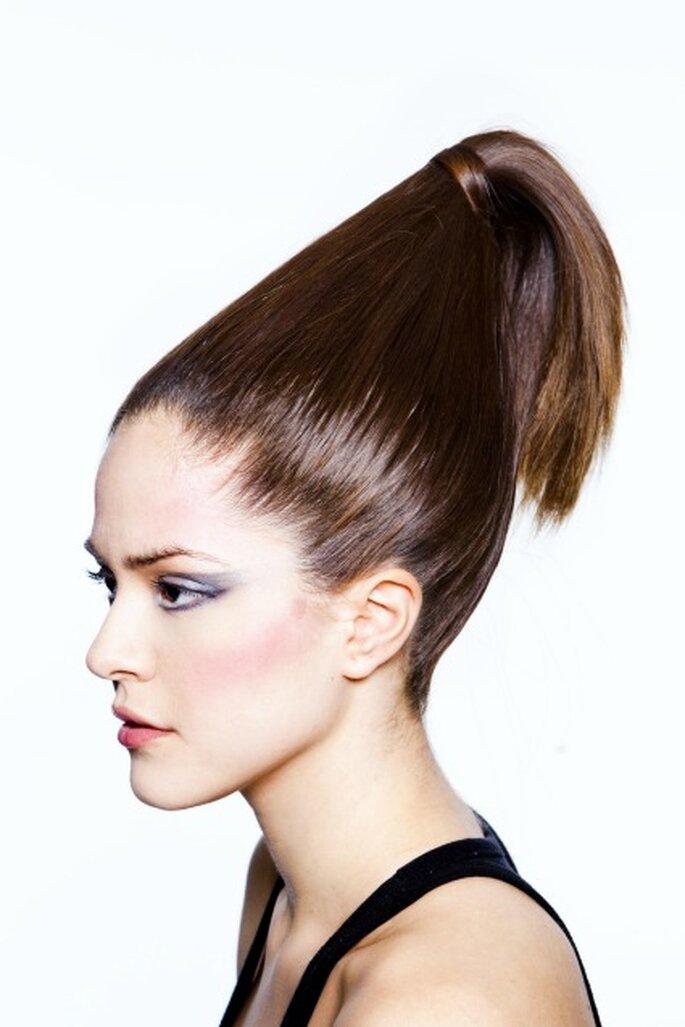 Otro concepto de coleta para los peinados de novia 2012 - Art Lab