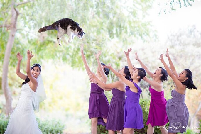 Foto via Facebook.com/bridesthrowingcats