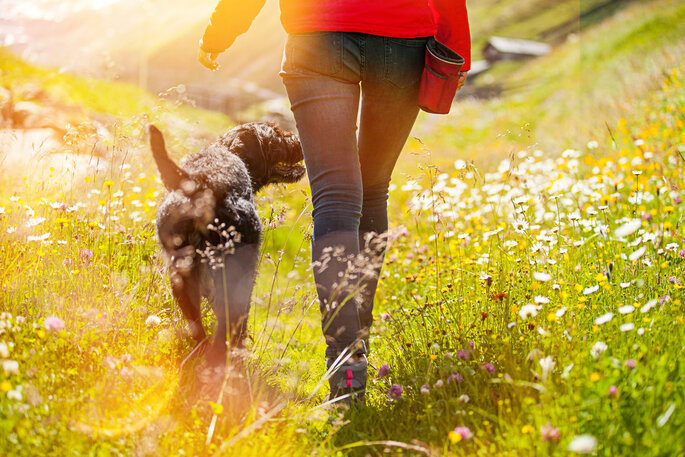 Foto via Shutterstock: Lukas Gojda