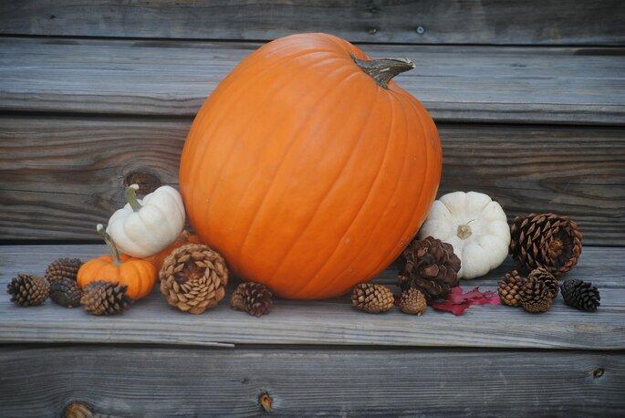 pumpkin-505303_1920