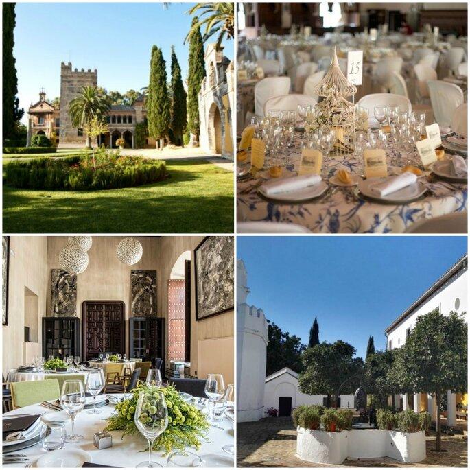 Castillo Monclova, Hacienda El Vizir, Hotel Cortijo Torre de la Reina, Hotel Palacio Villapanés