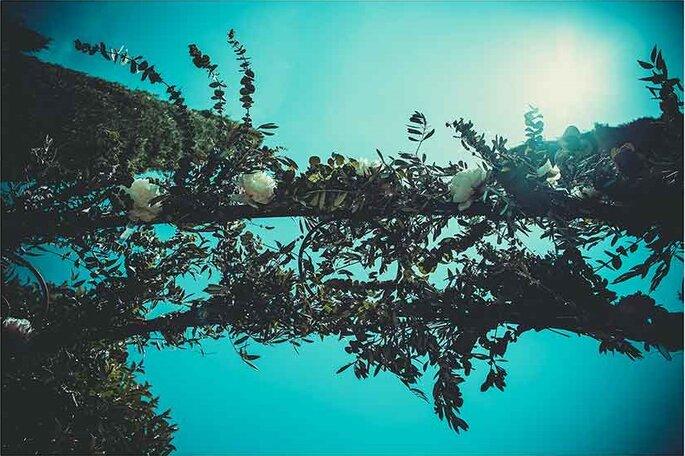 «Arche de cérémonie»  Photographe – Pierre Sautel Arche de cérémonie - Création et mise en place – Label'Emotion Provence