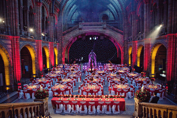 National History Museum - Marianne Taylor Photography - Hintze Hall