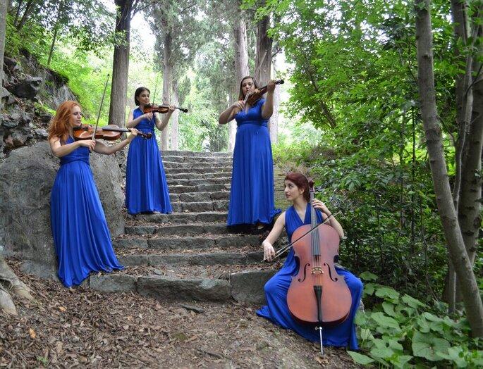Gregovic Music - quartetto d'archi