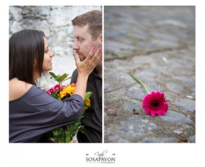 Eine lange und glückliche Ehe - Foto: www.cindysosapavonblog.com