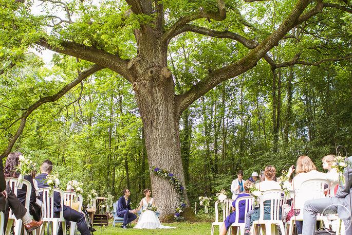 Cérémonie laïque dans un clairière, sous un arbre majestueux