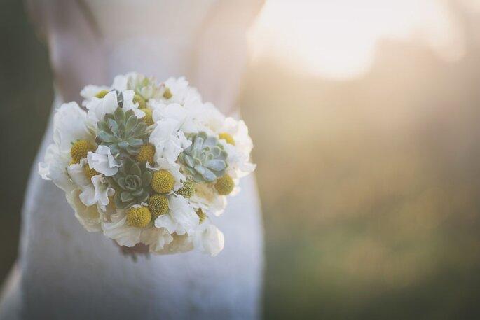 The Dream Lab - Wedding Planner