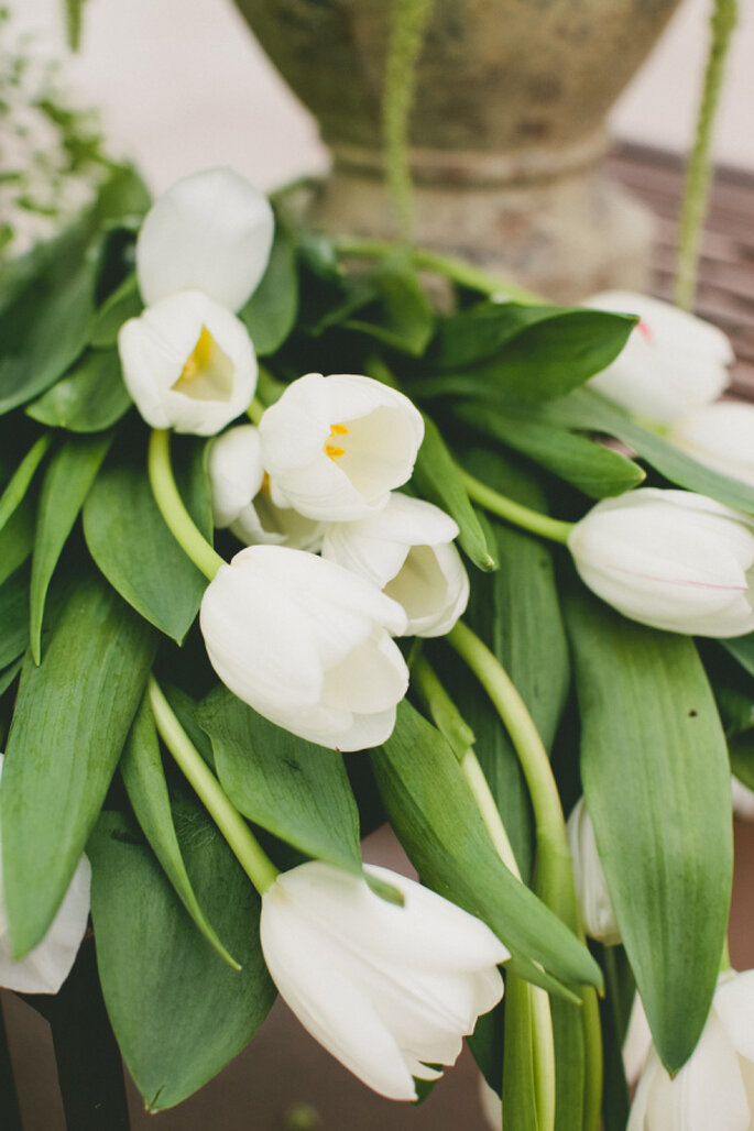 decoración con tulipanes - onelove photography