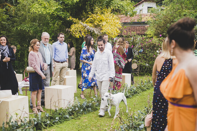 Cachorro na cerimônia