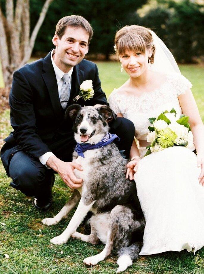 6 tips para incluir a tu mascota en la boda - Perry Vaile